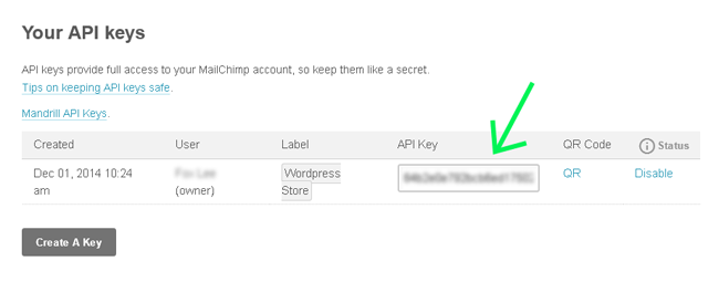 screenshot showing how to find the mailchimp api keys