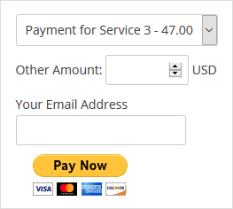 accept-paypal-payment-widget-example-1
