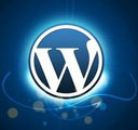 wordpress_theme_icon_128
