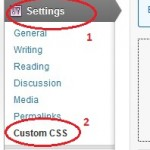 WordPress Custom CSS Plugin
