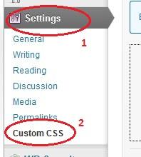 wp-custom-css-plugin-settings
