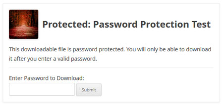 example-download-with-password-protection