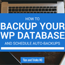 How to Backup the WordPress Database